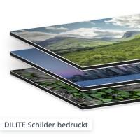 DILITE Aluminium Verbundplatte bedruckt