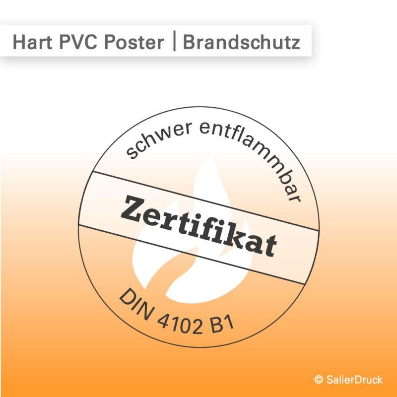 Hart PVC Poster Regulus – brandschutzzertifizierte, flammhemmdende Poster bestellen | SalierDruck.de