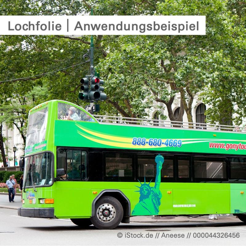 Lochfolie Window Graphic auf Fahrzeugen -  bei SalierDruck.de