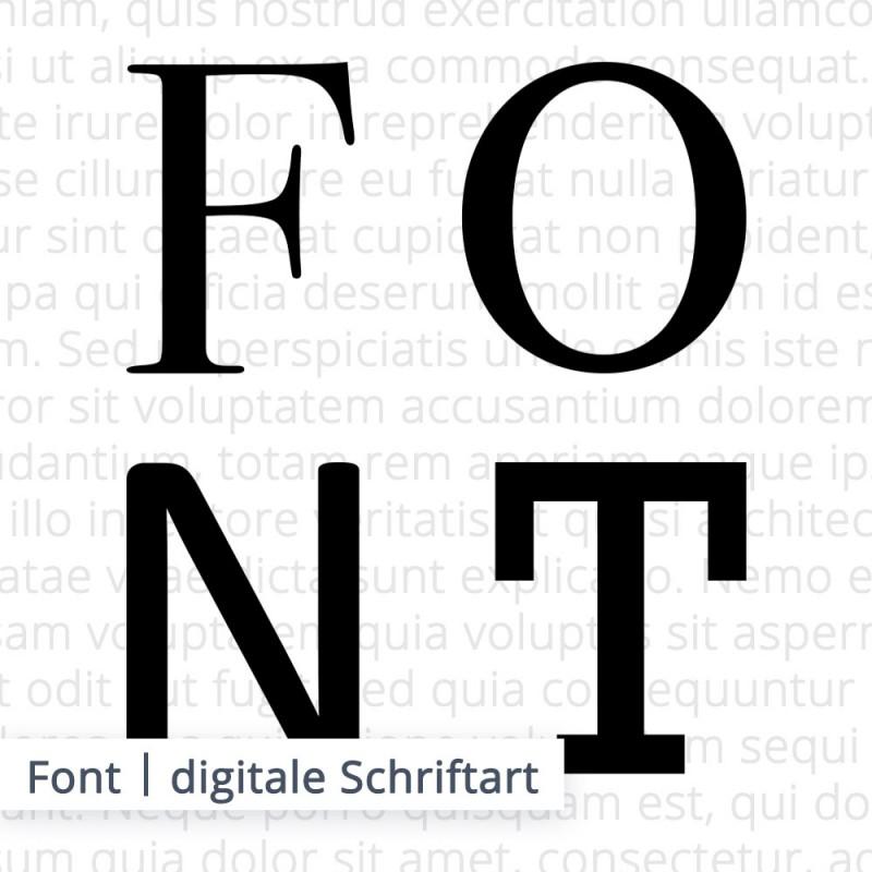 Es gibt unterschiedliche digitale Schriftarten die in der Fachsprache als Font bezeichnet werden. Der Ersteller dieser Schriften wird Typograf genannt.