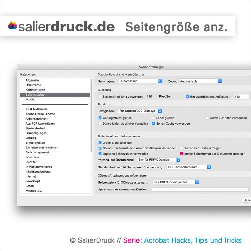 Grundeinstellungen in Adobe Acrobat für das Einblenden der Seitengröße.